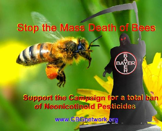 Stop The Mass Death of Bees