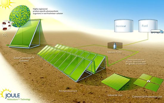 Joule Helioculture Technology uses highly engineered product-specific photosynthetic orgamisms in non-freshwater solution to produce fuels