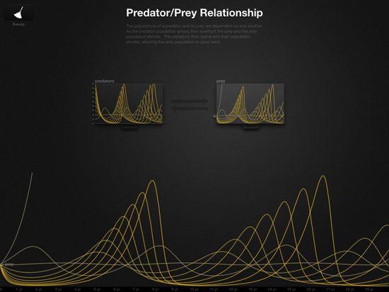 Predator-Prey Relationship B