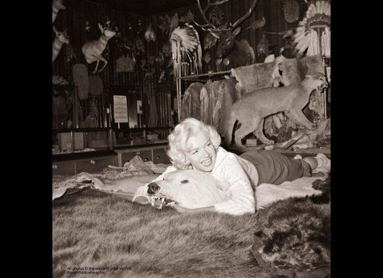 Marilyn Monroe - Lost Look Magazine Photos 1953 b
