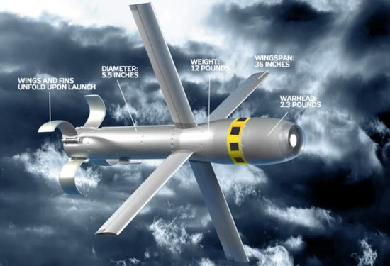 MQ-8B Fire Scout's can be equipped with Grumman's Viper Strike air-to-ground missile