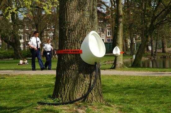 P-Tree park1