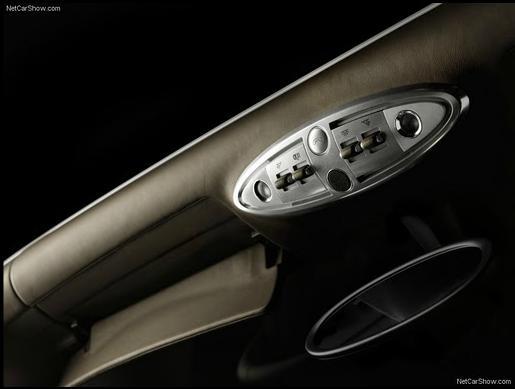 Bugatti Veyron Grand Sport interrior door panels