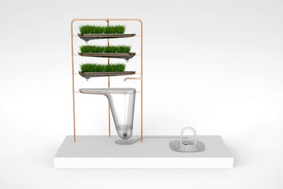 Microbial Home includes a very public toilet that turns yoiur 'excreta' into power
