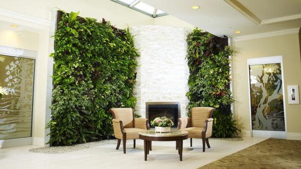 Organic Food Vertical Gardens