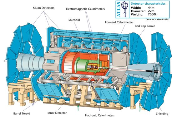 ATLAS Detector internal structures