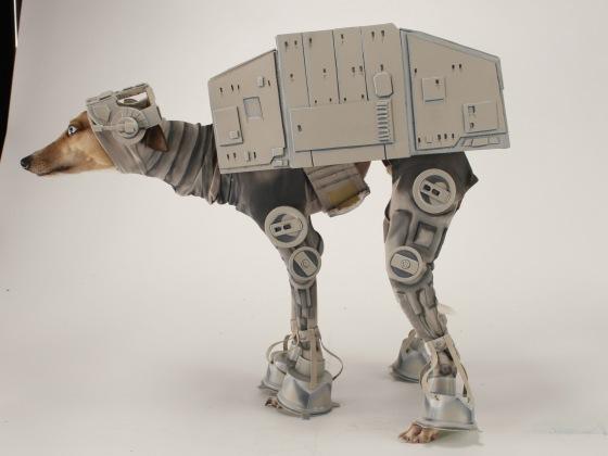 Whippet dressed like star wars robot
