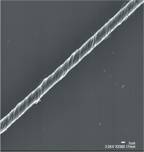 Carbon nanotube fibre highly magnified