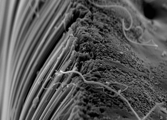 Carbon nanotubes under extreme magnification