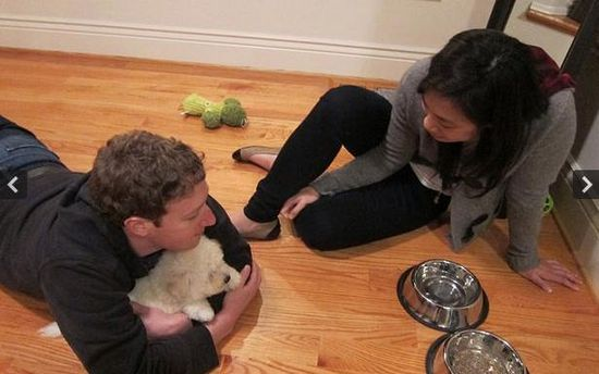 Hijacked picture of Zuck and girlfriend Priscilla Chan and their newly adopted puppy