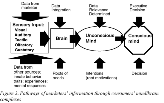 Pathways of marketers' information through consumers' main-brain complexes