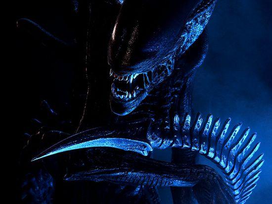 The Alien monster from the sci-fi movie thriller 'Alien'