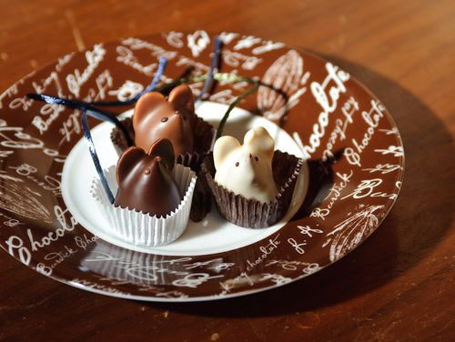 Burdick's Chocolate Mice truffles in dark, milk and white chocolate were served as desert for Mark and Priscilla's dinner wedding