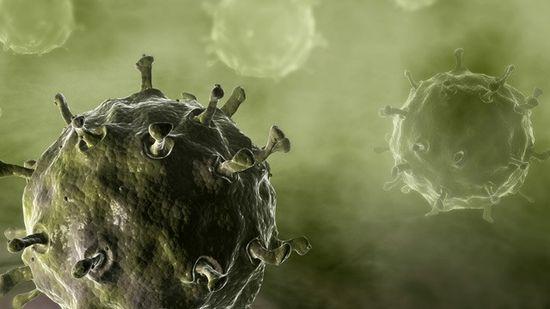 Illustration of the Avian flue virus