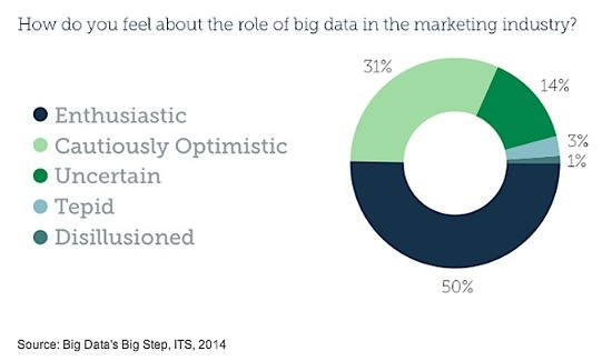 How do you feel about the value of big data in marketing