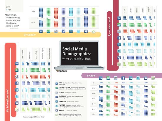 Social Media Demographics -- Whose Using What Social Network Sites