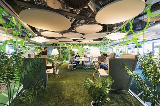GOOGLE DUBLIN -- Top that with veritable jungles decorating workspaces, and Google's downright Dr. Seussian Dublin campus is possibly the most playground-like in the whole family