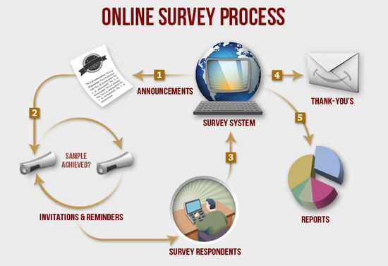 Online-survey-process