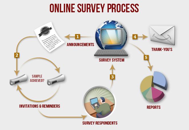 Online-survey-process