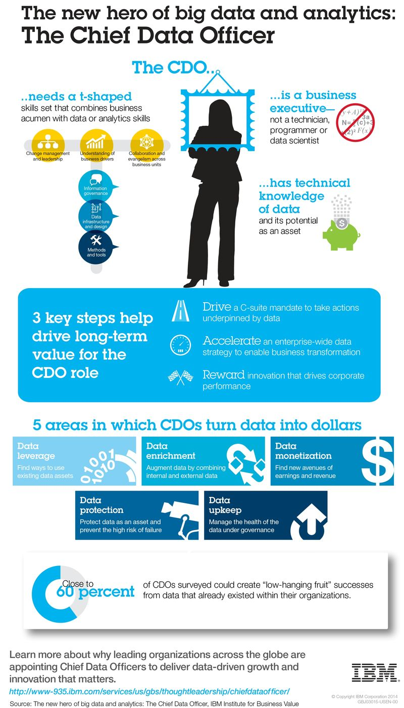 The New Hero of Big Data and Analytics -- The Chief Data Officer - IBM Analyitics