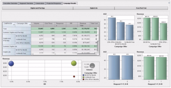 Figure 3 - Campaign and offer performance reports are integrated with revenue metrics and demographic indicators