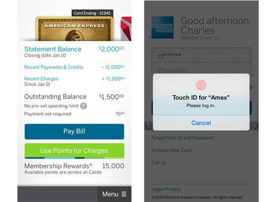 Screenshot of American Express' mobile payment app
