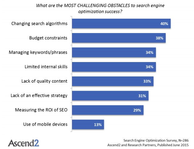 What are the most challenging obstacles to search engine optimization success