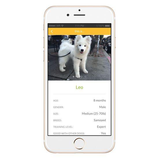 Bark'N'Borrow app screenshot 3