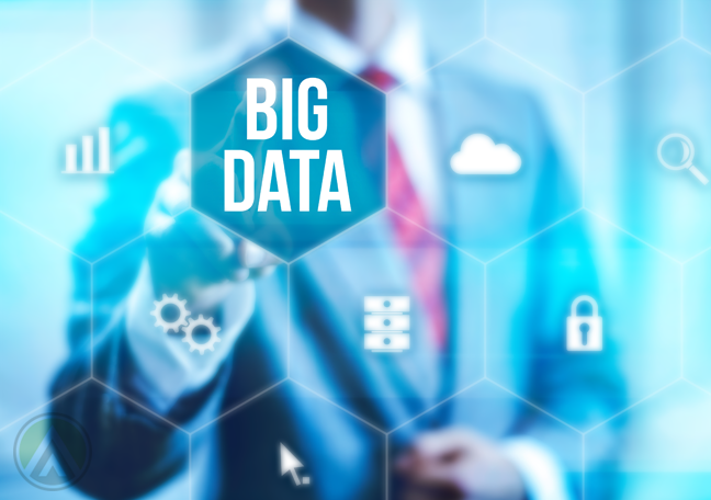 Big Data and the CEO